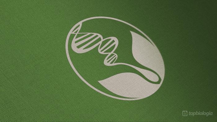 Logo Biologia em Tecido Verde