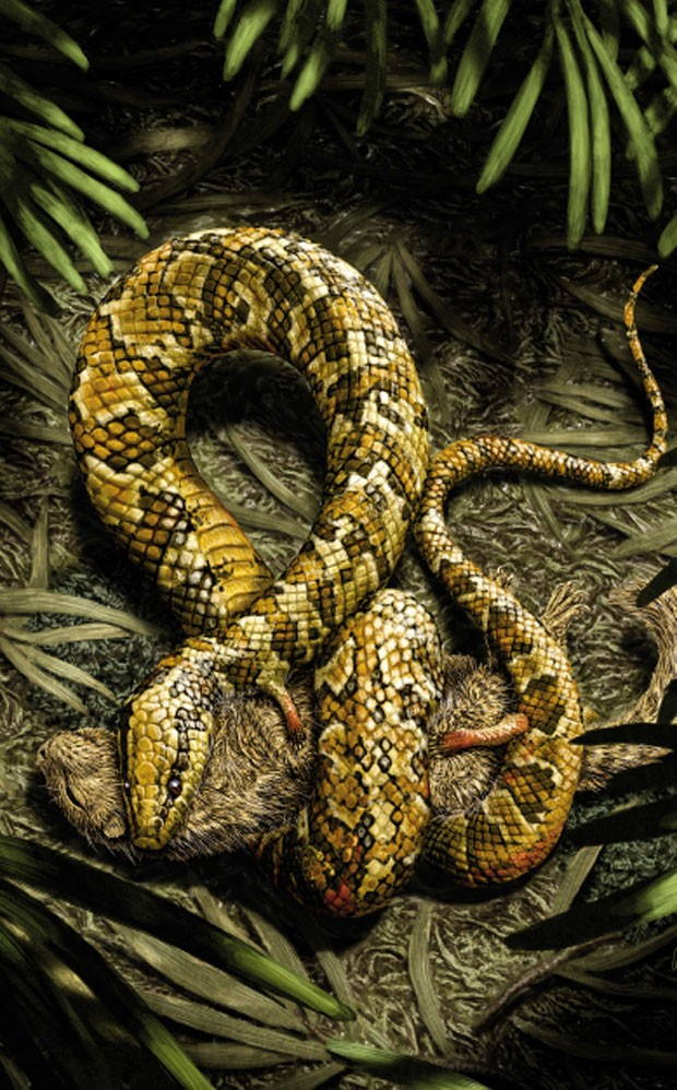 Cobra pré-histórica